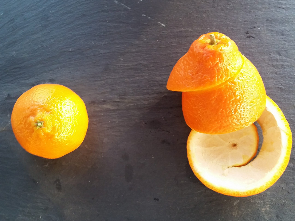 Orange peels on table